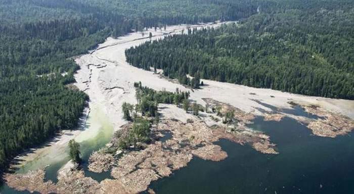¿Viste esto en las noticias? El desastre ecológico que muy pocos medios difundieron 18