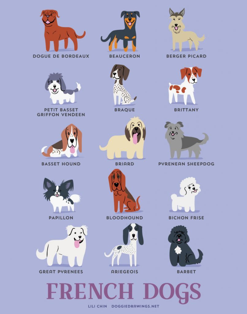 Dogs-Of-The-World-Cute-Poster-Series-Shows-The-Geographic-Origin-Of-Dog-Breeds6__frances