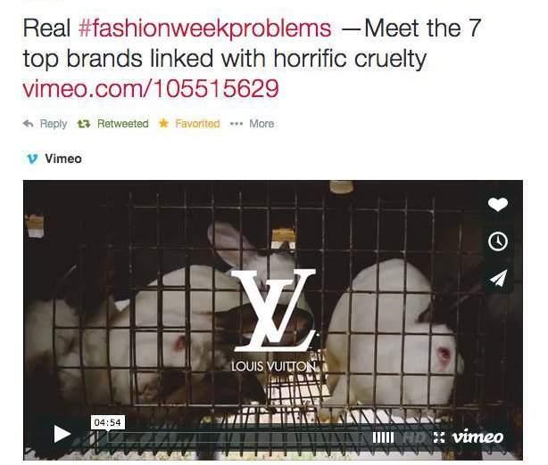 7 marcas que usan la crueldad para hacer moda. Una cámara oculta descubre qué hay detrás de ellas 6
