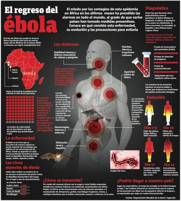 Lo que no te contaron sobre el ébola 2