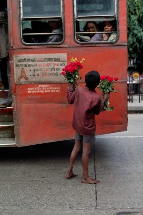 India Autor: Steve McCurry
