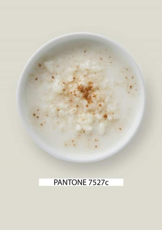 marcando_tendencia_blog_pantone_food_gastromedia_comida_espanola_arroz_leche