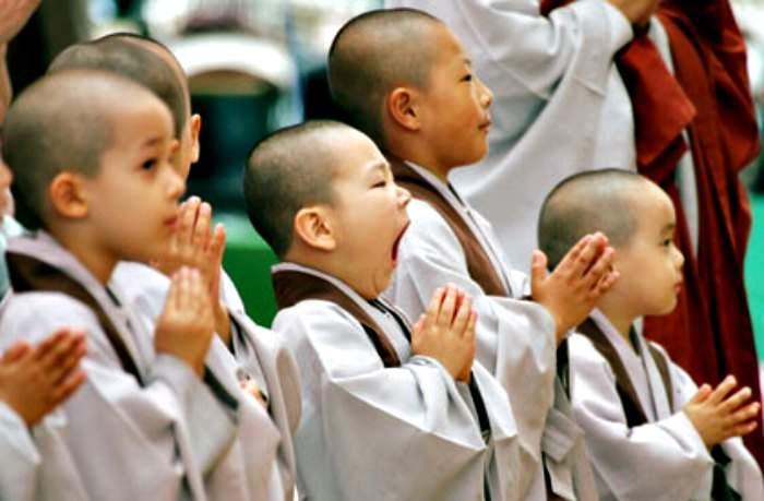Los 7 pensamientos budistas que podrían cambiar tu vida. ¿Te atreves a intentarlo? 12
