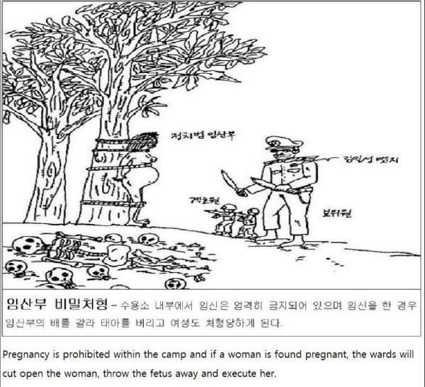 corea del norte dibujo aborto forzado