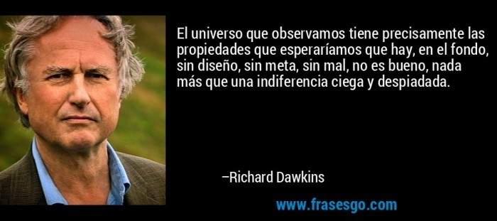 frase-el_universo_que_observamos_tiene_precisamente_las_propiedade-richard_dawkins