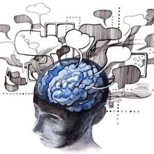 7 mitos sobre nuestro cerebro que aun nos seguimos creyendo 4