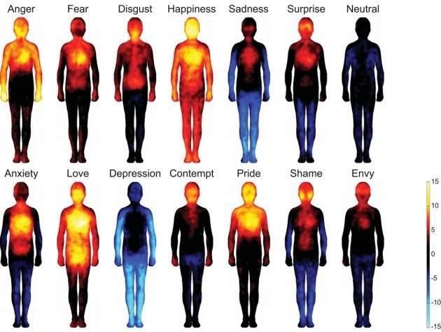 La mayoría de los participantes en el estudio coincidieron en señalar las mismas zonas del cuerpo para la misma emoción. / Cortesía de: courtesy of Lauri Nummenmaa, Enrico Glerean, Riitta Hari, and Jari Hietanen