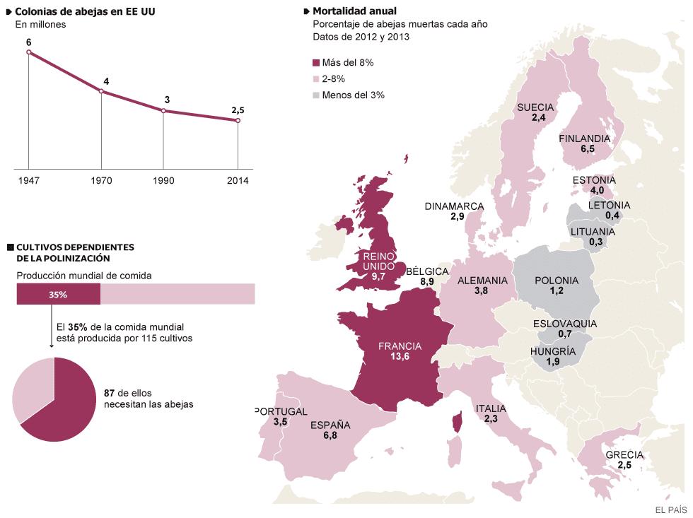 Infografía sobre el ritmo de extinción de las abejas, Fuente: Fuentes: Comisión Europea, Casa Blanca y El País
