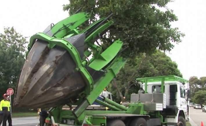 No los talan, los salvan. Espectacular método para transplantar árboles en Melbourne 15