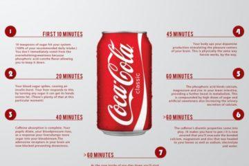 Todo esto sucede en los 60 minutos siguientes a beberte una lata de Coca-Cola 4
