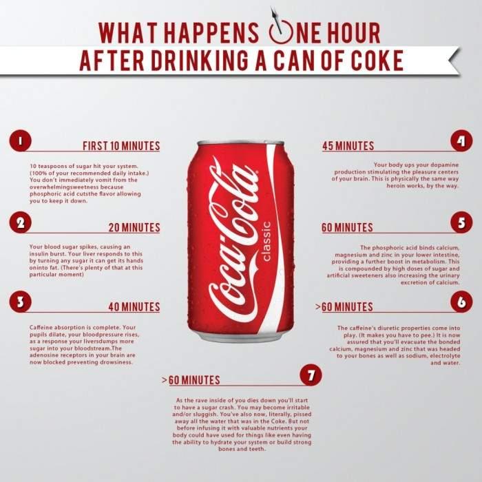 Todo esto sucede en los 60 minutos siguientes a beberte una lata de Coca-Cola 1