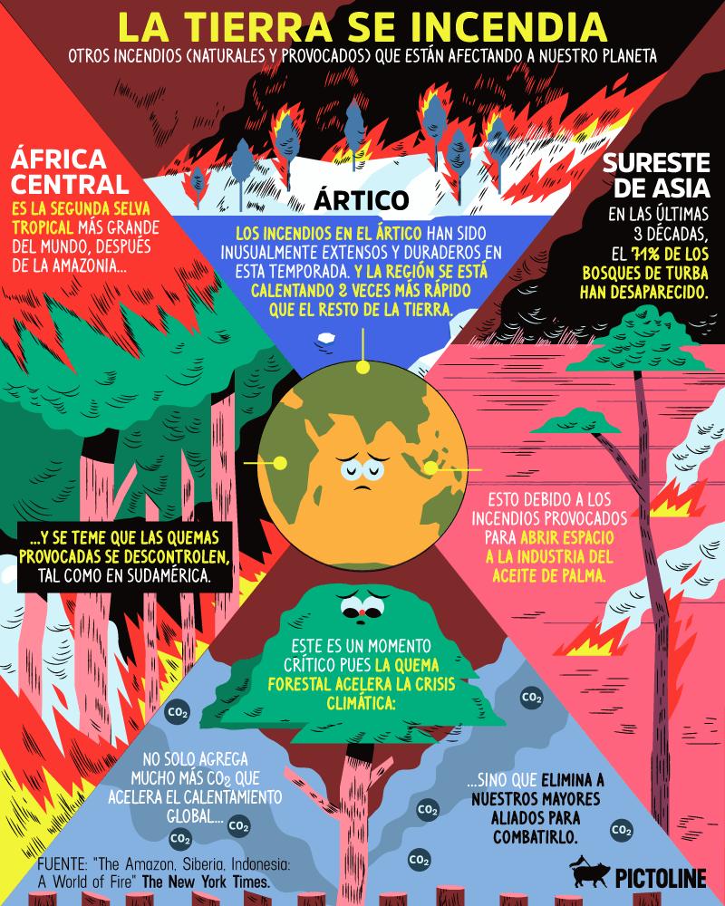 5 razones por las que arde el Amazonas y 5 cosas que puedes hacer para evitarlo (AQUÍ Y AHORA) 3