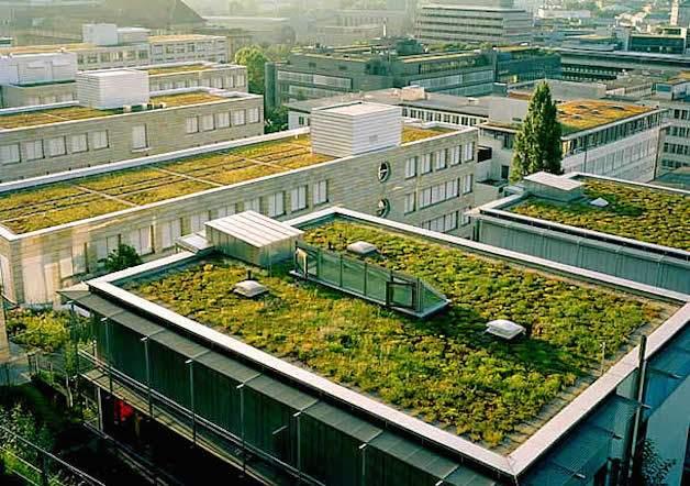 sembrar en cada tejado