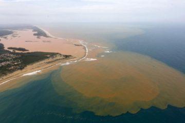 Ocurrió el mayor desastre ambiental de la historia de Brasil. ¿Lo viste en las noticias? 10