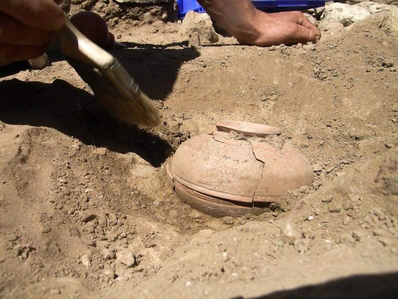 Las semillas fueron encontradas en una vasija de arcilla en la Reserva Menemonee en Wisconsin.
