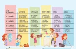 Tabla de tareas del hogar para niños según su edad: la enseñanza que los padres han olvidado 20