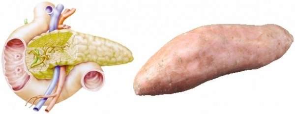 batata-pancreas-FILEminimizer-e1449061024272