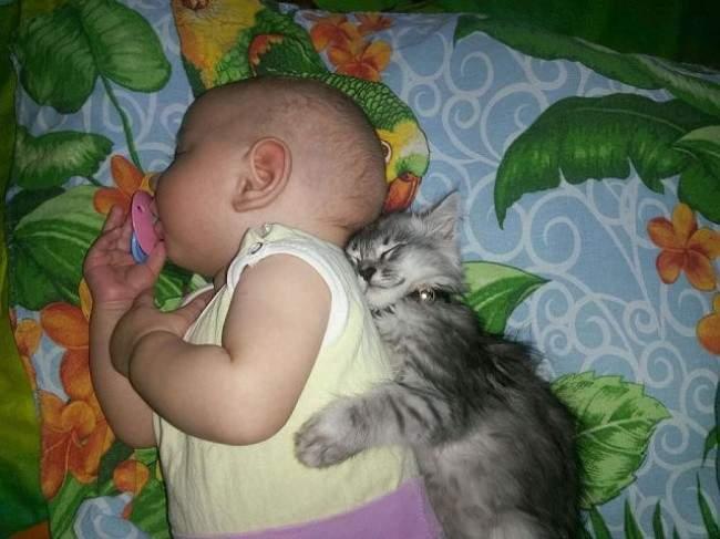 niños-mascotas-2