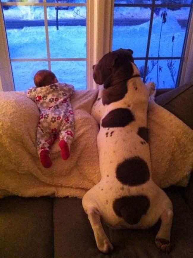 554655-R3L8T8D-650-Little-Kids-Big-Dogs-9