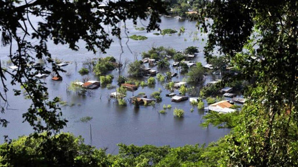 Seguimos talando árboles y preguntándonos por qué cada vez hay más inundaciones 3