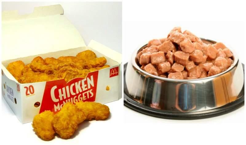 Estudio científico lo confirma: un nugget se parece más a comida para perros que a un filete de pollo 2