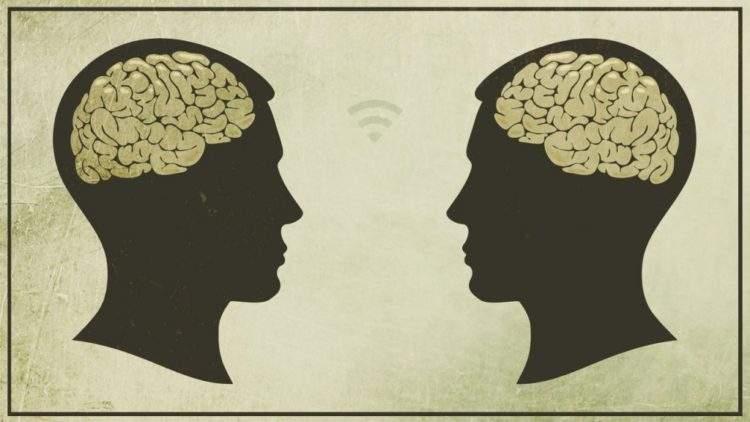 cerebro-neuronas