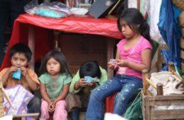 5 libros para entender por qué más de 800 millones de personas sufren todavía hambre en el mundo 16