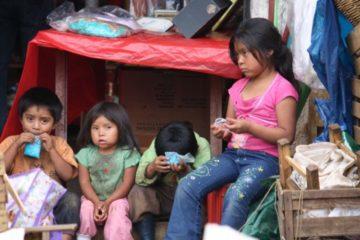 5 libros para entender por qué más de 800 millones de personas sufren todavía hambre en el mundo 14