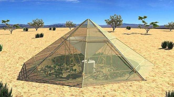 Crear un invernadero sostenible en el desierto es posible. Y la idea también la puedes aplicar en tu jardín. 16