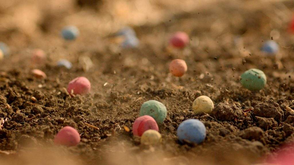 Bombardeo de semillas de colores para salvar a las abejas. Una idea que merece ser compartida 2