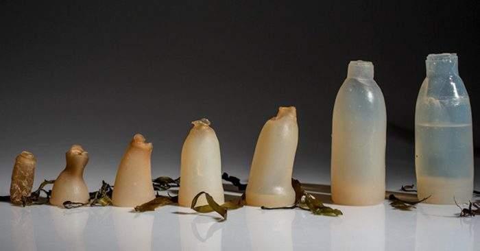 El estudiante de diseño Ari Jónsson ha creado una botella hecha de algas
