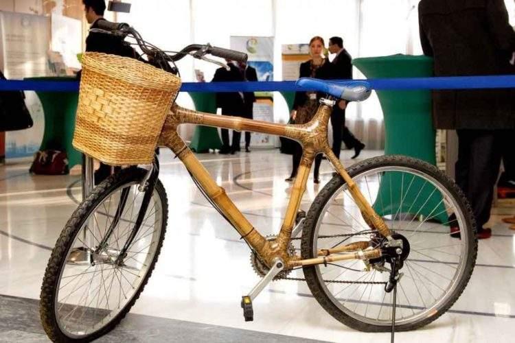 ¿Por qué el bambú es considerado un material sustentable por excelencia? 4