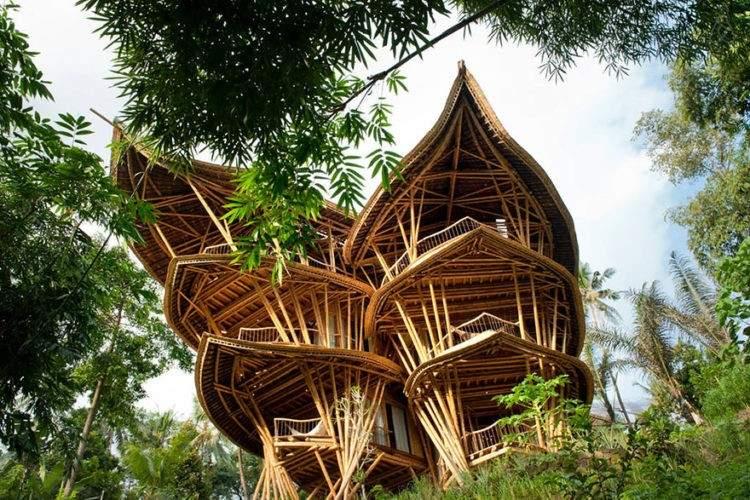 ¿Por qué el bambú es considerado un material sustentable por excelencia? 1
