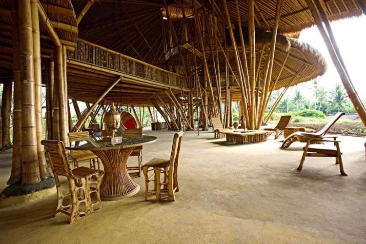 ¿Por qué el bambú es considerado un material sustentable por excelencia? 5