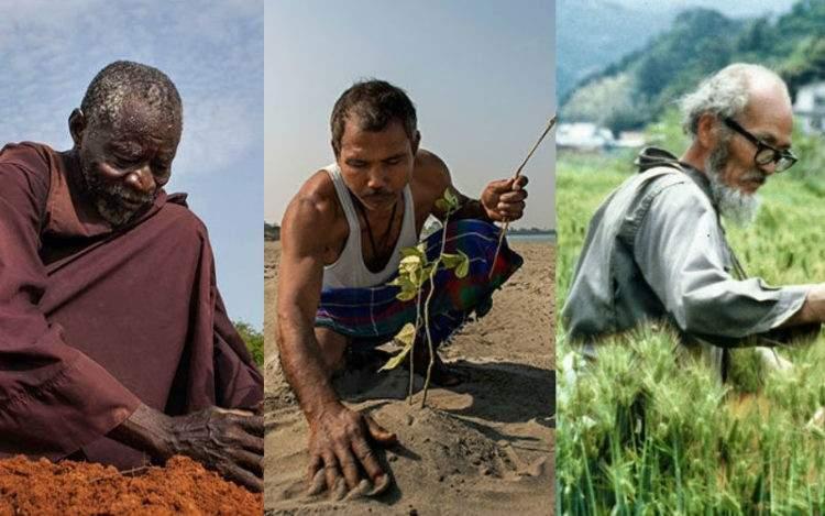 Tres iniciativas individuales que lograron frenar y reverdecer el desierto 8