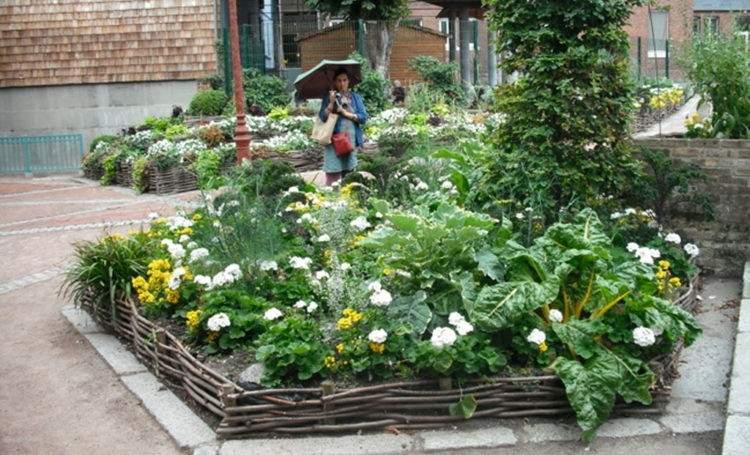 En el 2008 empezaron a cambiar las flores ornamentales por el cultivo de hortalizas en todos los espacios públicos.