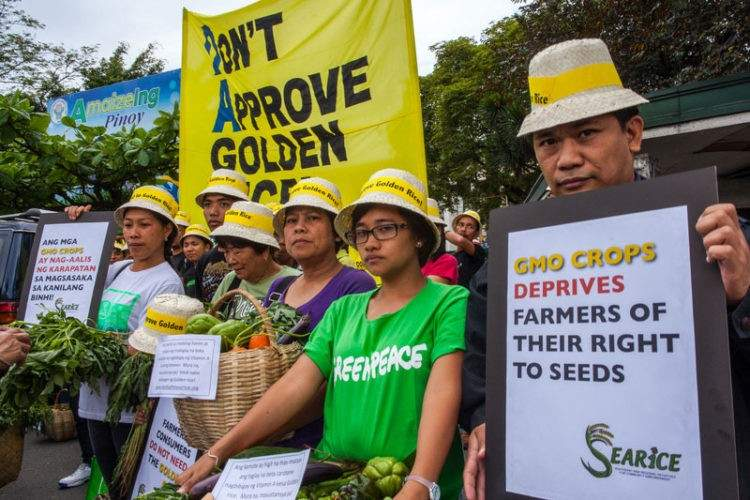 "Greenpeace contesta a los 109 nobeles que la acusan de ""crimen contra la humanidad"" 9"
