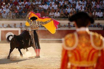 Francia elimina las corridas de toros de su patrimonio cultural 12