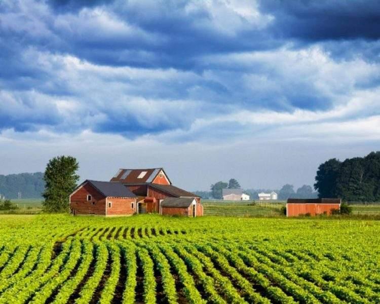 9af8b3_dinamarca-agricultura-sostenible