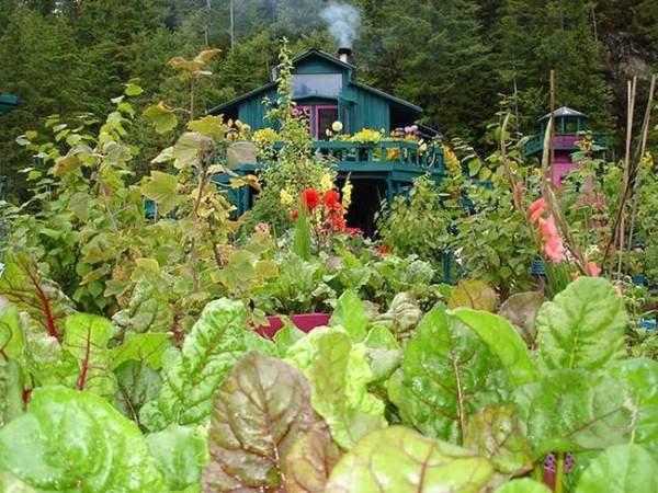 Este proyecto es un ejemplo de soberanía alimentaria y autosuficiencia. Foto: http://www.treehugger.com/