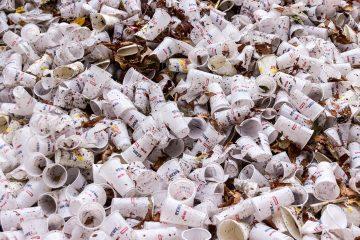 Francia dice no a los platos y vasos de plástico. ¡Que cunda el ejemplo! 10
