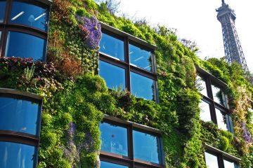 Jardines verticales, arte y ecología en las ciudades 12