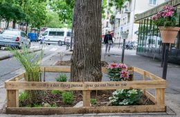 París permite por ley que cualquier ciudadano cultive comida sana y sostenible en cualquier lugar de la ciudad 8