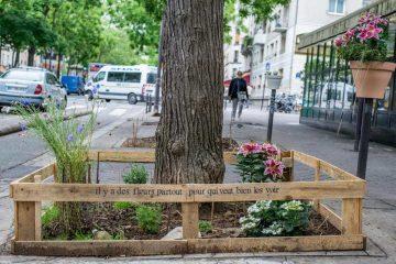 París permite por ley que cualquier ciudadano cultive comida sana y sostenible en cualquier lugar de la ciudad 10