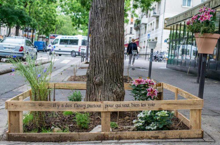París permite por ley que cualquier ciudadano cultive comida sana y sostenible en cualquier lugar de la ciudad 2