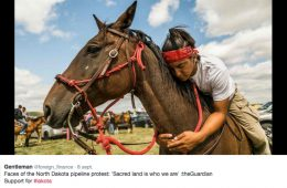 ¿Por qué la tribu de los Lakota tiene una de las tasas de suicido más altas el mundo? 14