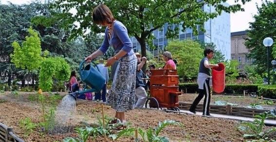 La ciudad de París quiere que sus ciudadanos ayuden a reverdecer la ciudad y cultivar su propia comida. Foto: http://invitedujour.over-blog.fr