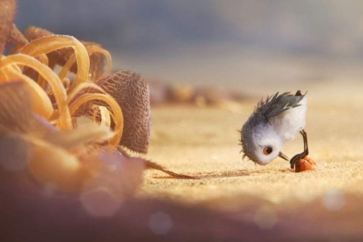"""Escena del corto """"Piper"""", la última producción de Pixar"""