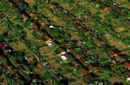Conoce la localidad suiza donde cada habitante cultiva su propia comida 20