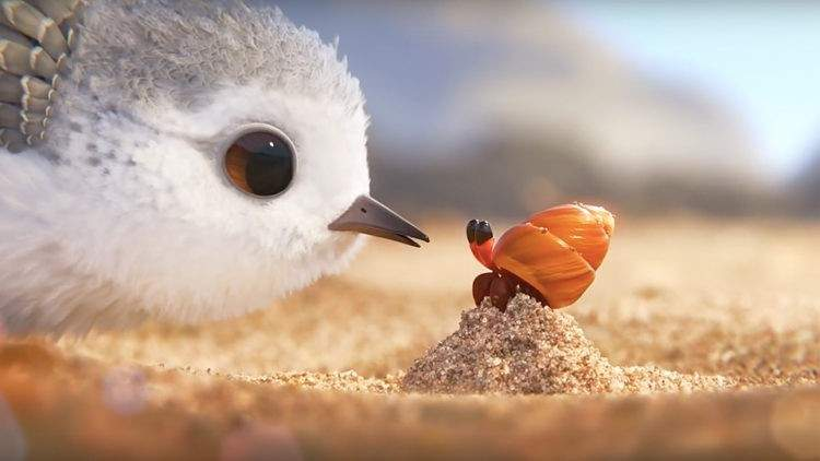 piper-short-film-disney-pixar-1